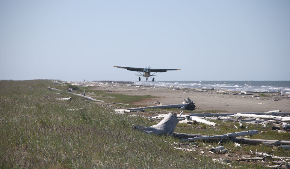 Bush plane landing on a beach